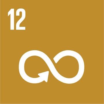 SDG 12 – Verantwoorde consumptie en productie