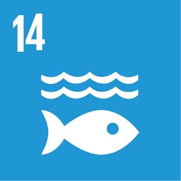 SDG 14 – Leven in het water