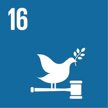 SDG 16 – Vrede, veiligheid en sterke publieke diensten