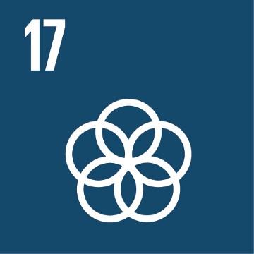 SDG 17 – Partnerschap om doelstellingen te bereiken