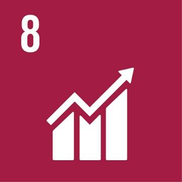 SDG 8 – Waardig werk en economische groei